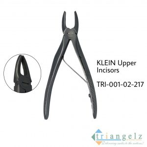 KLEIN Upper Incisors